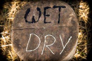 Dry versus wet lubricant